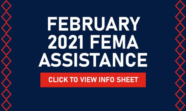 Winter Storm February 2021 FEMA Assistance Information