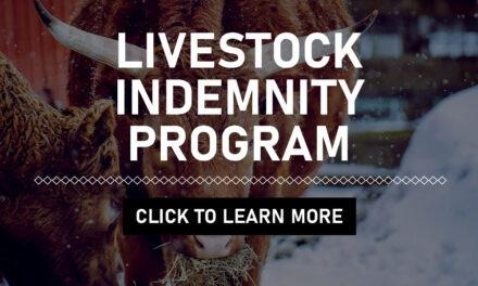 Disaster Assistance Live Stock Indemnity Program